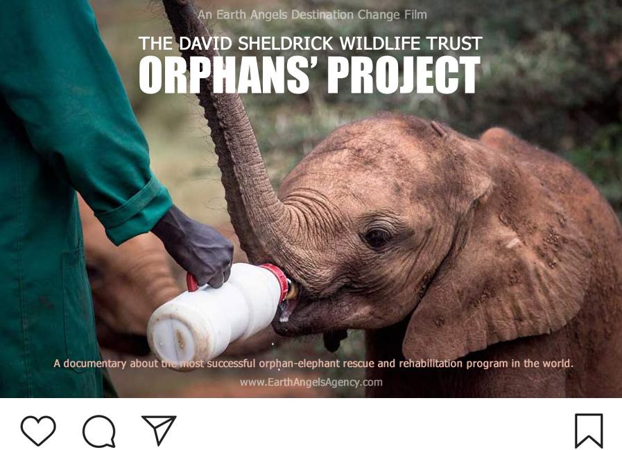Destination-Change-Orphans-Project-instagram-v2.jpg