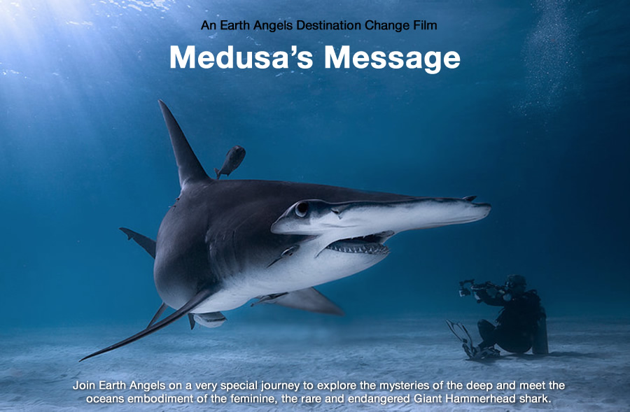 Medusas-Message.jpg