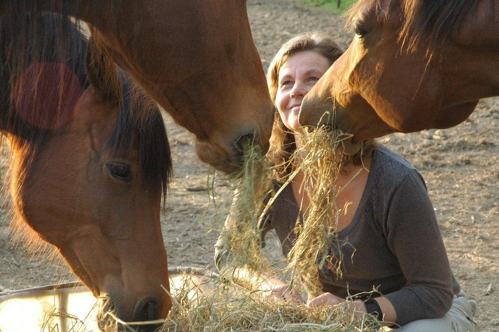 paardencoaching pauze.JPG