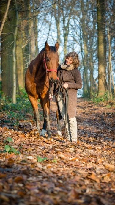 Paardencoaching 7.jpg
