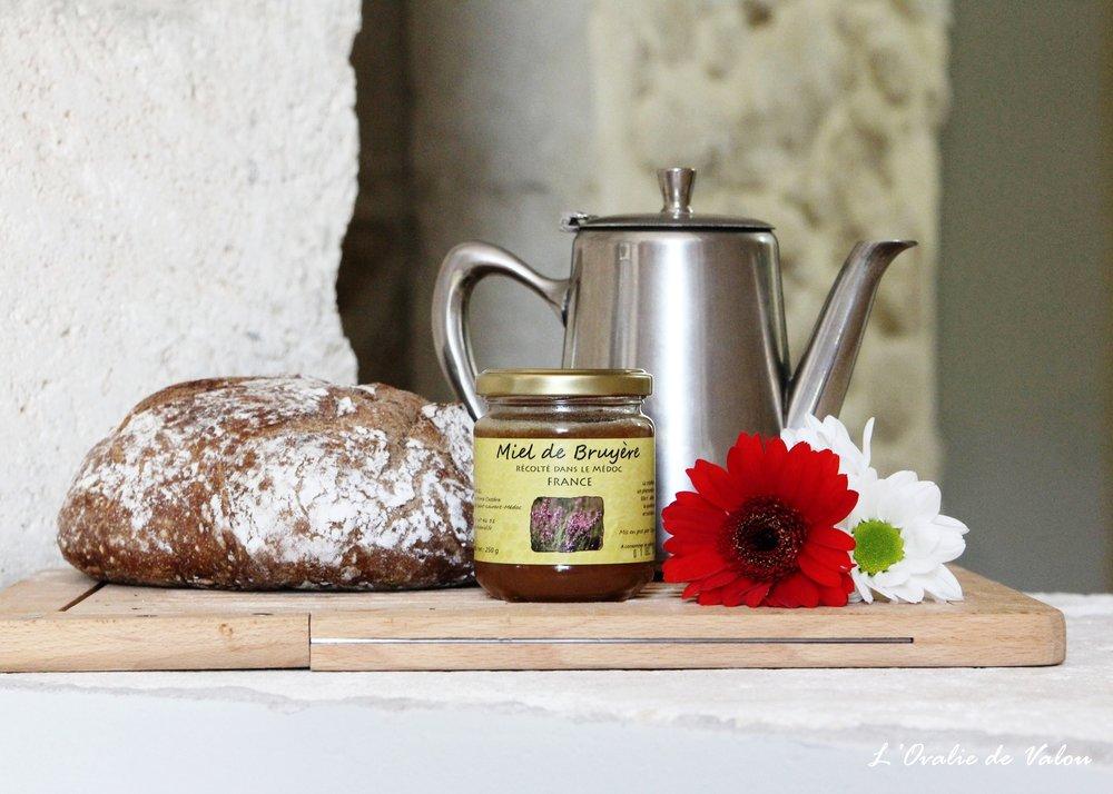 miel de bruyère - Issu de la pinède de la forêt du Médoc.