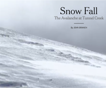 snow_fall.png