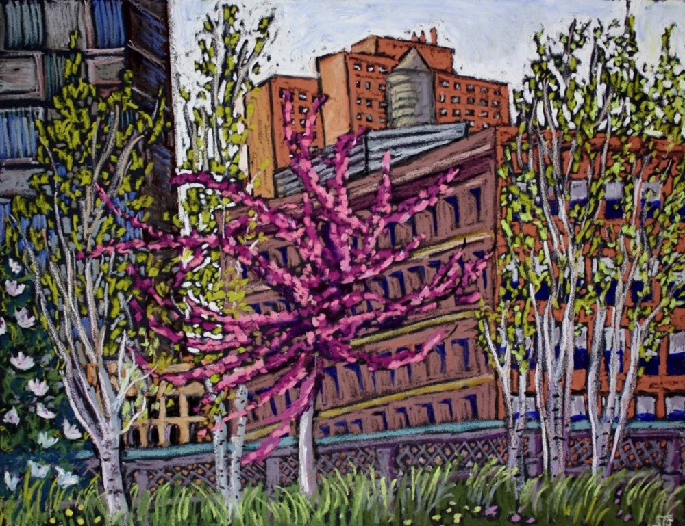 Redbud on the Highline, 2013