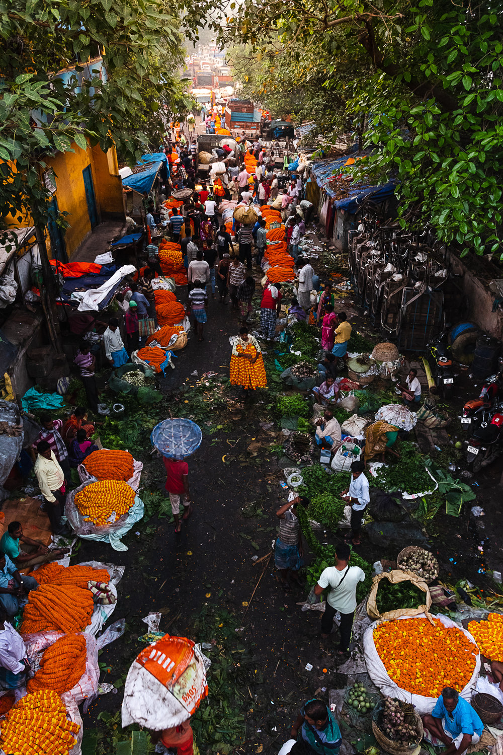 Mallik Ghat Flower Market - top view of market at sunrise