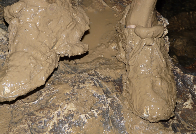 Cavern Clay -