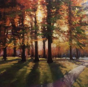 """Trees  36x36"""""""