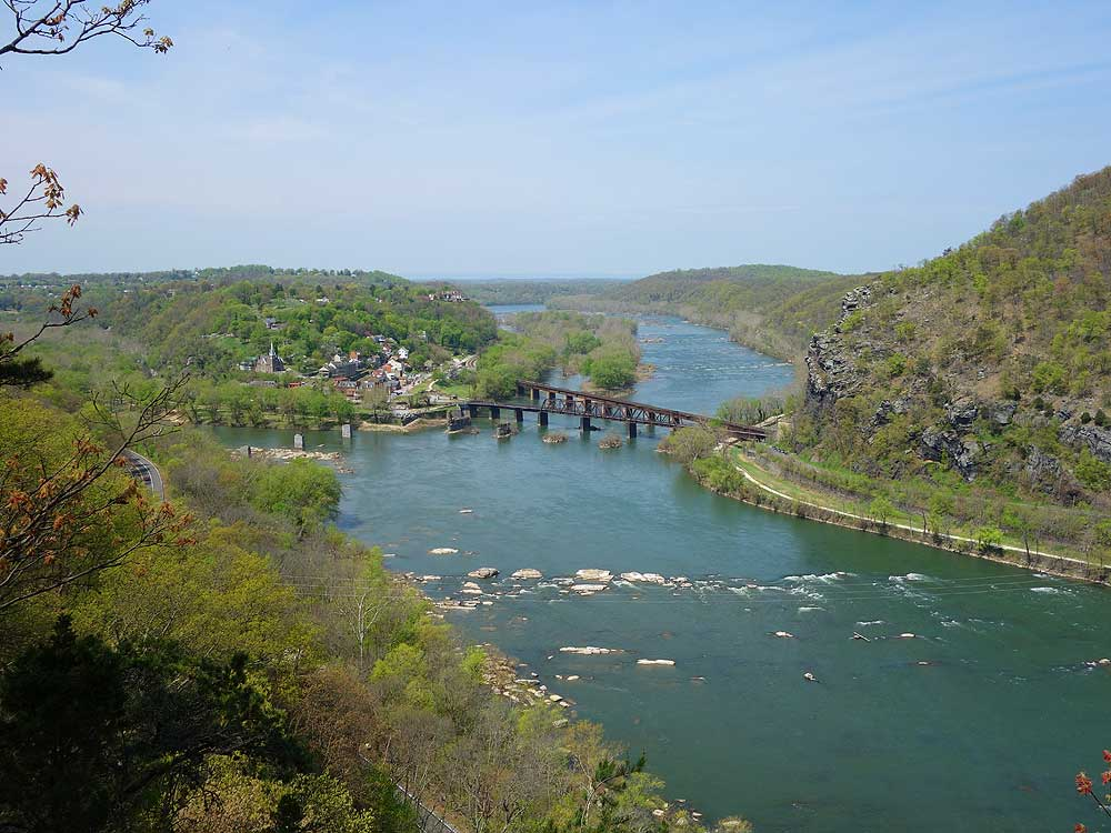 The Potomac River near Point of Rocks and Harpers Ferry is a premier Small Mouth Bass fishery. During the summer months and low water conditions you can wade across the entire river in places.