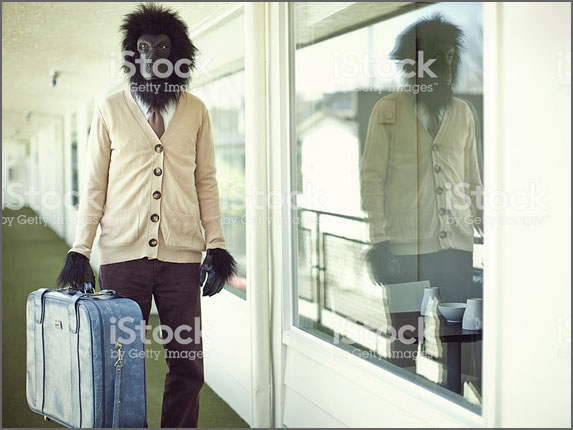 Original Search: Vintage Suitcase and Motel  (iStock)