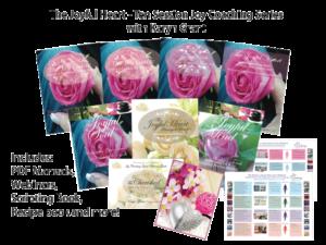 The-Joyful-Heart-marketing-module-300x225.png