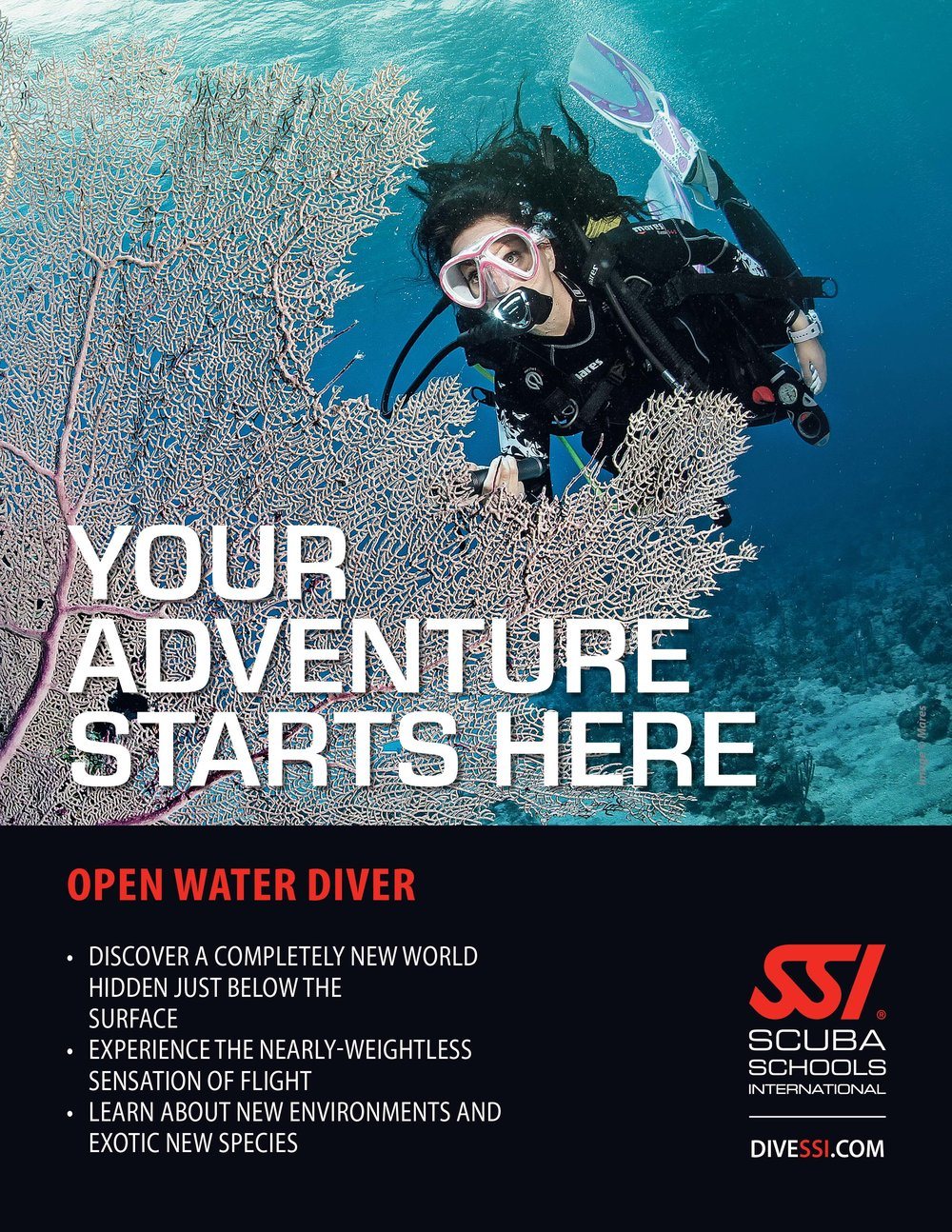 These globally-recognized certification programs are the best way to begin your life-long adventure as a certified scuba diver.  test the waters with our Try SCUBA course or take the plunge and become a fully certified diver with the open water Diver course.