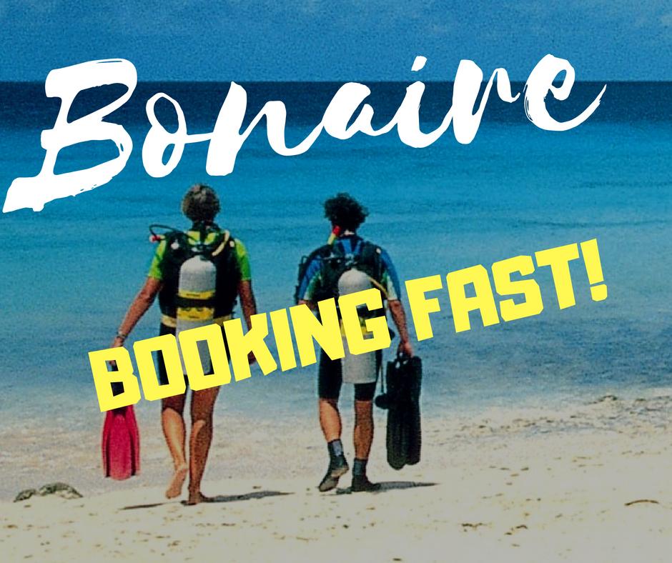 Bonaire (2).png