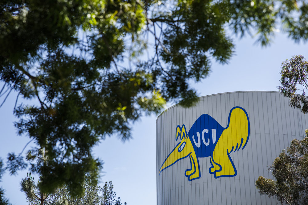 UCI-Specific College Application Tips: Advice from an