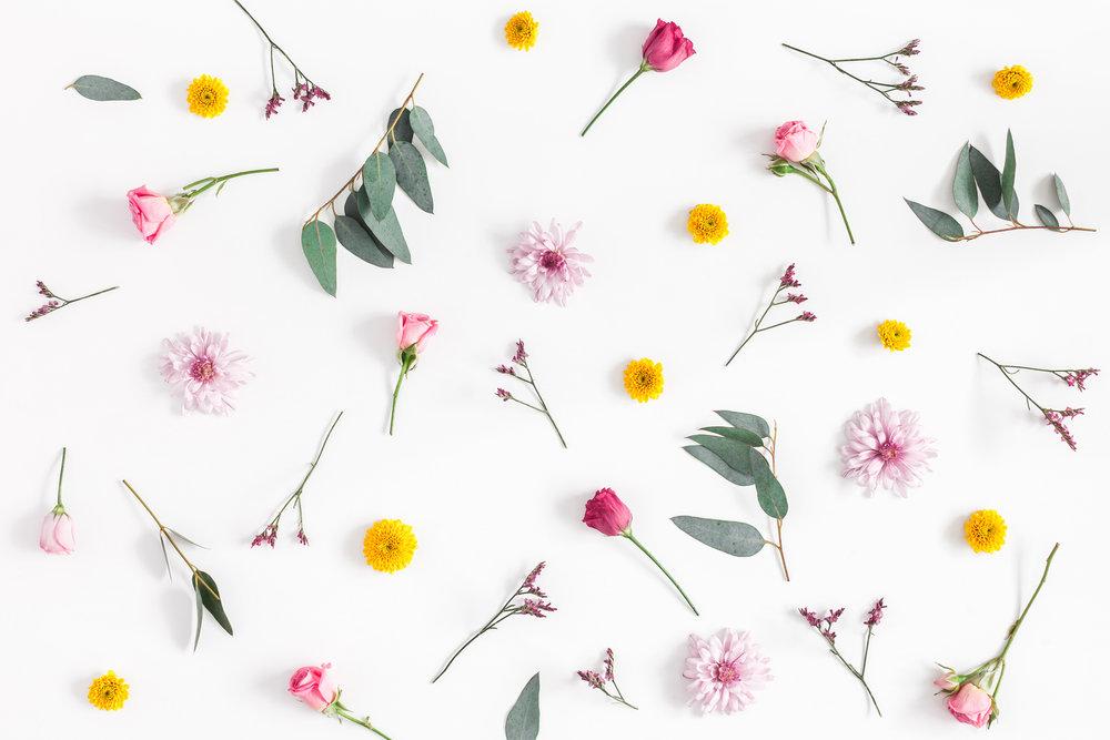 FlowerPattern-926985624.jpg