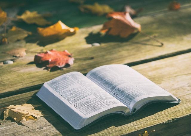 Vanderhoof Christian Fellowship our faith