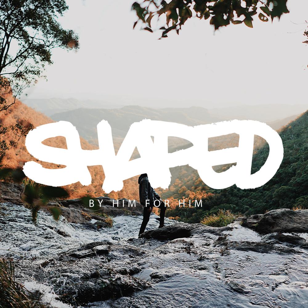 Shaped-Web.png