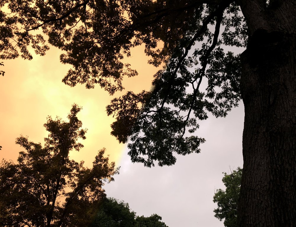 They sky that I saw (left) did not match what appeared on my iPhone. Here's how I was able to capture the photo.