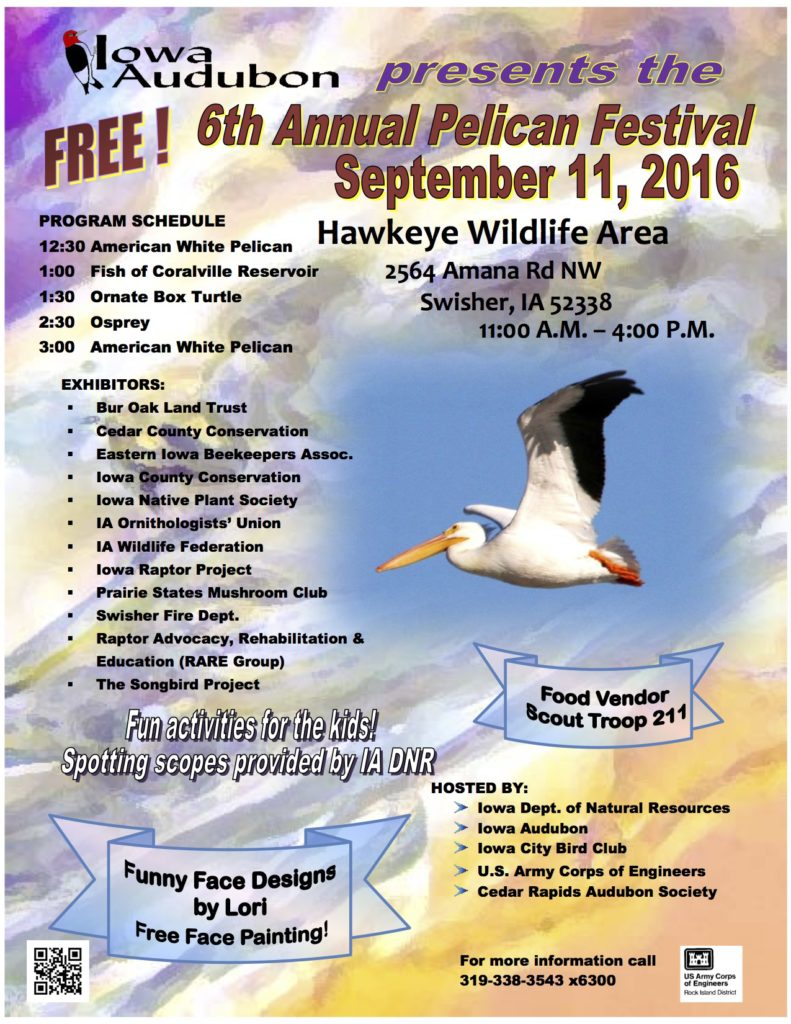 2016 Pelican Festival Flyer & Map2