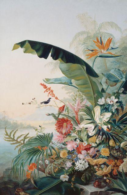 Fleurs exotiques, Jean Benner-Frais.jpg