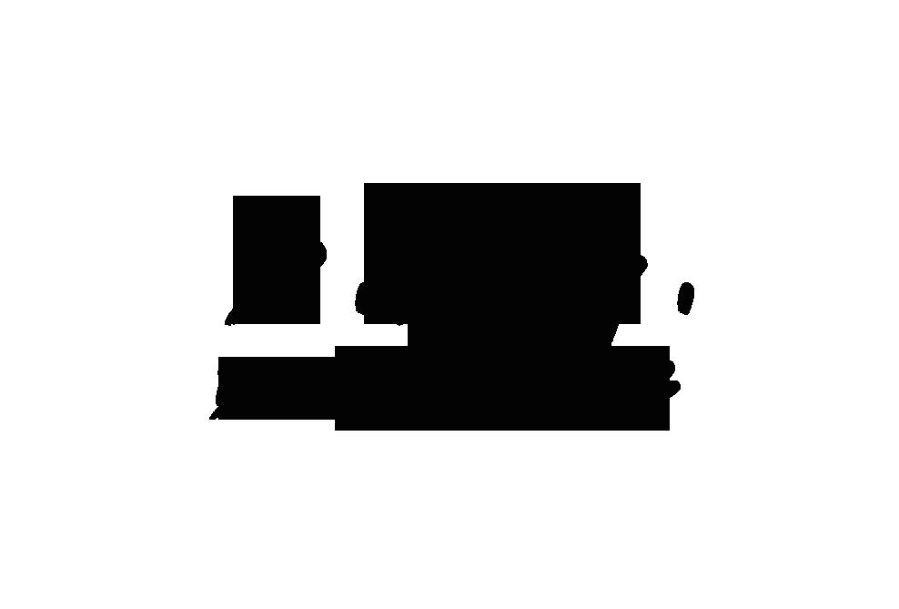 B.A.G Text Logo.png