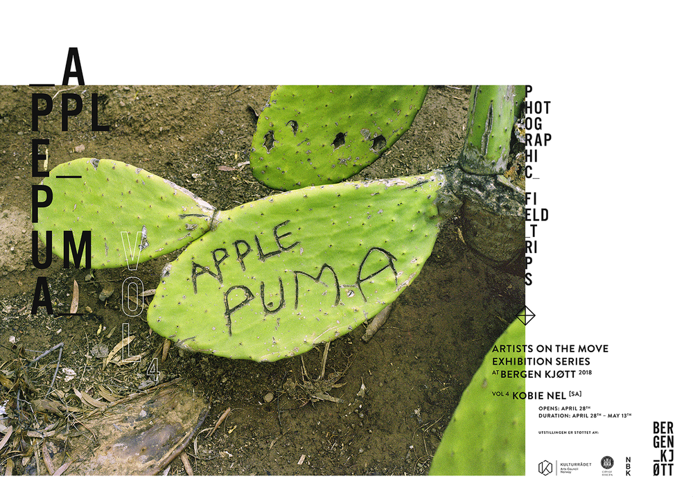 apple-puma-50-x-70-poster-print.png