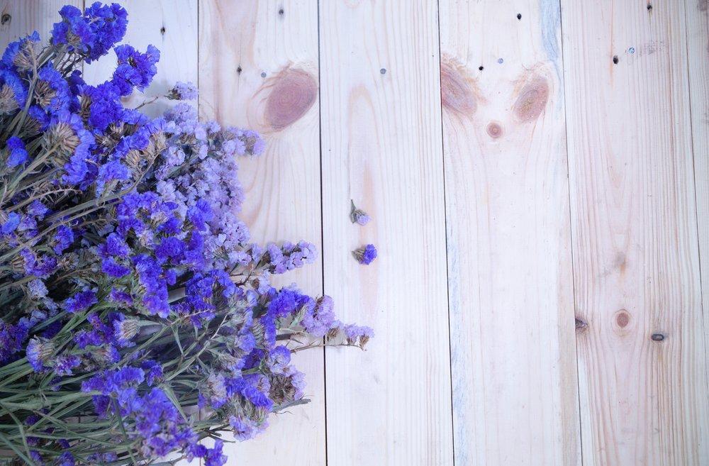 flowers-lavender-top-view-371052.jpg