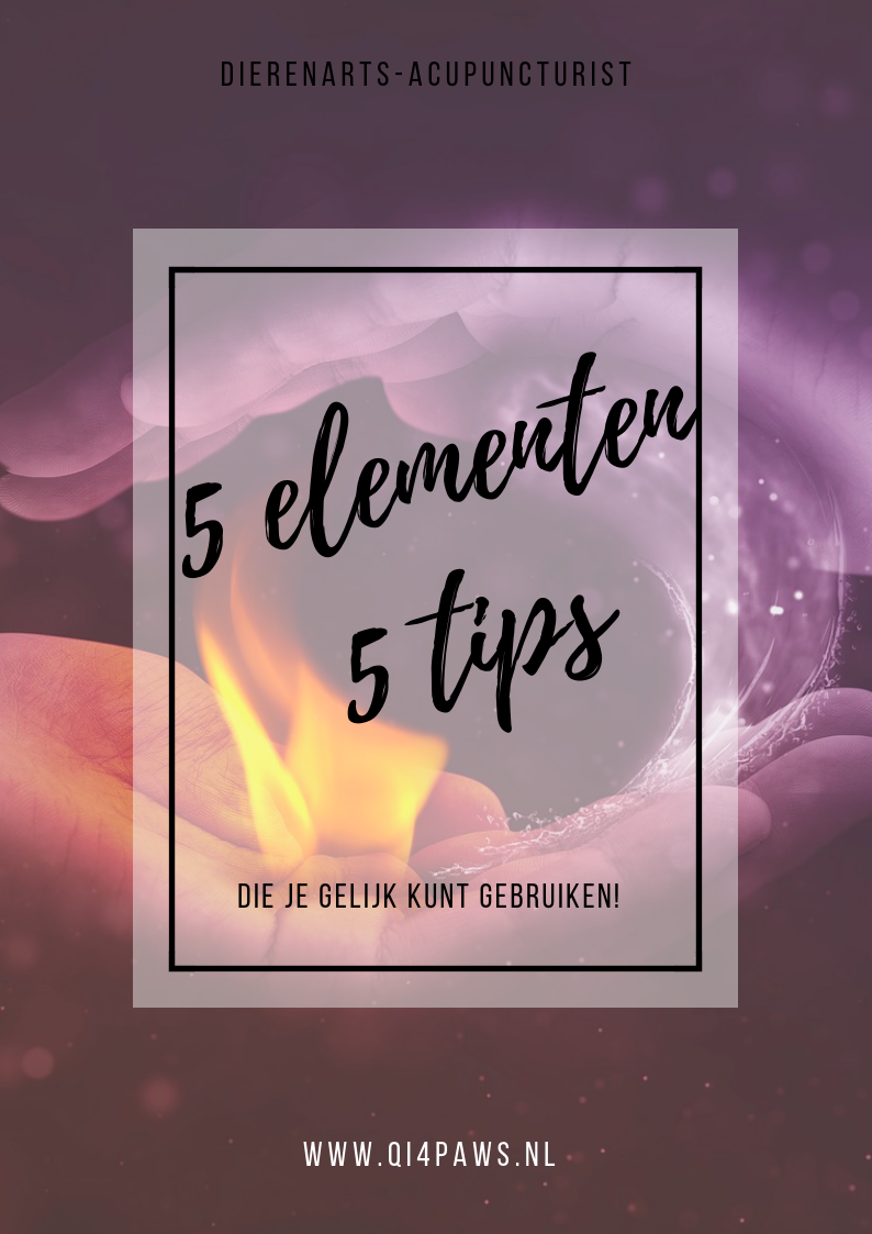 5 elementen5 tipsnl.png