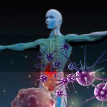 Autoimmunity -