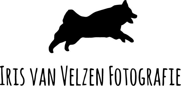 logo-vector-zwart-hond-en-irisvanvelzenfotografie.jpg
