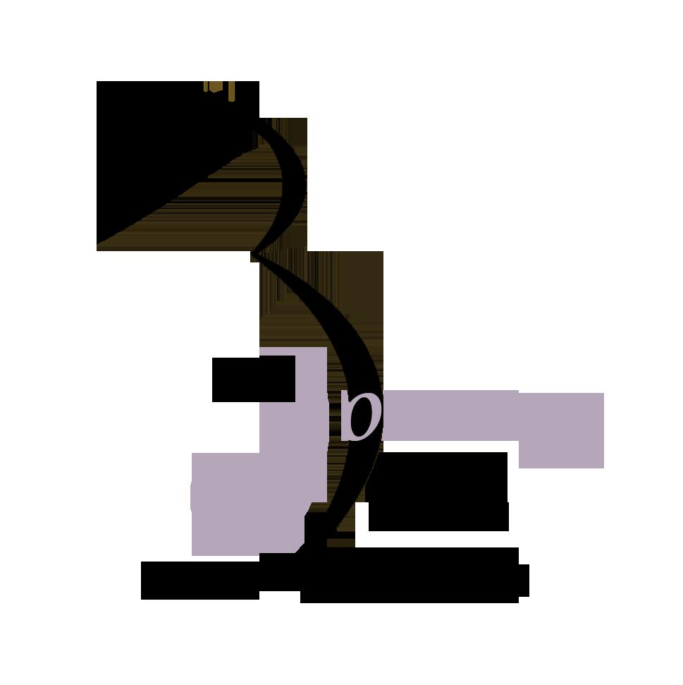 Logo Purple - Amber Berry.png