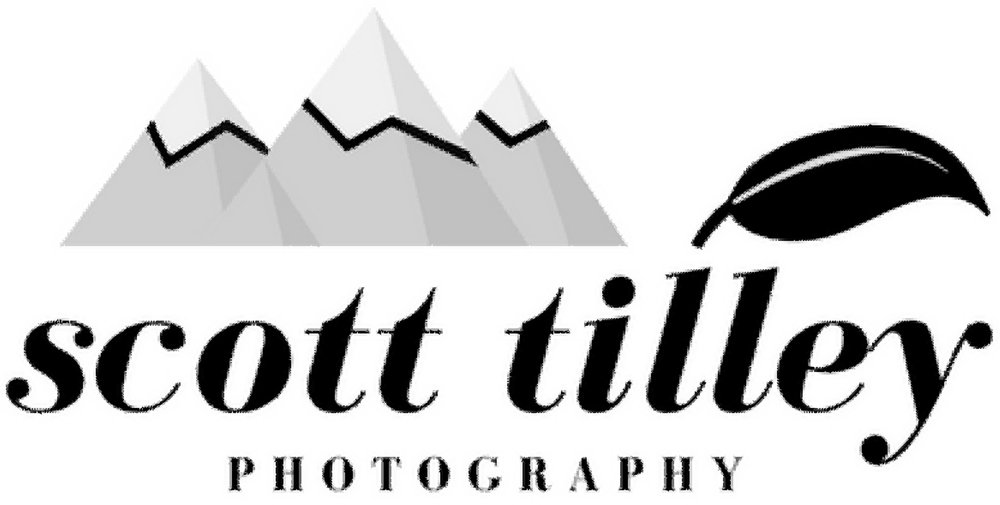 Scott Tilley Photography