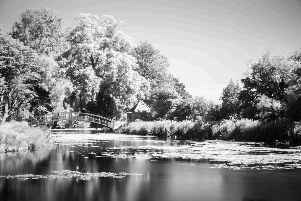 Bright Sun Shoot! - I switched to an Infrared filter for this shot as it was taken in the middle of a bright sunny day.