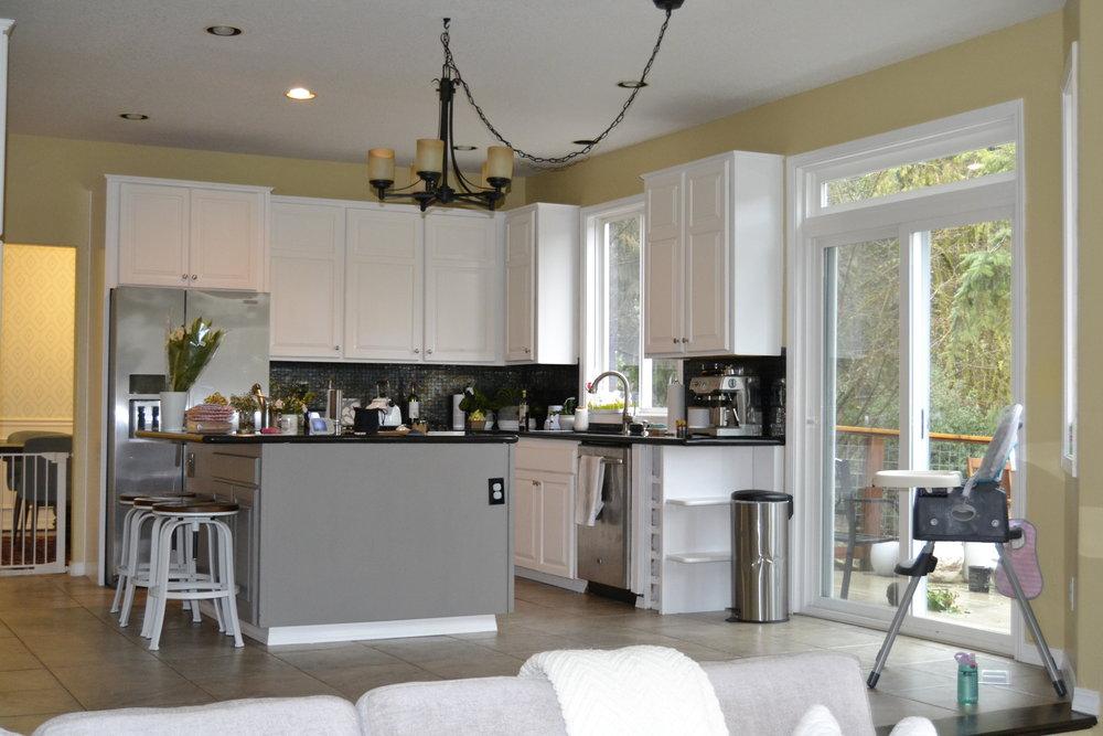 Kitchen looking in 2.JPG