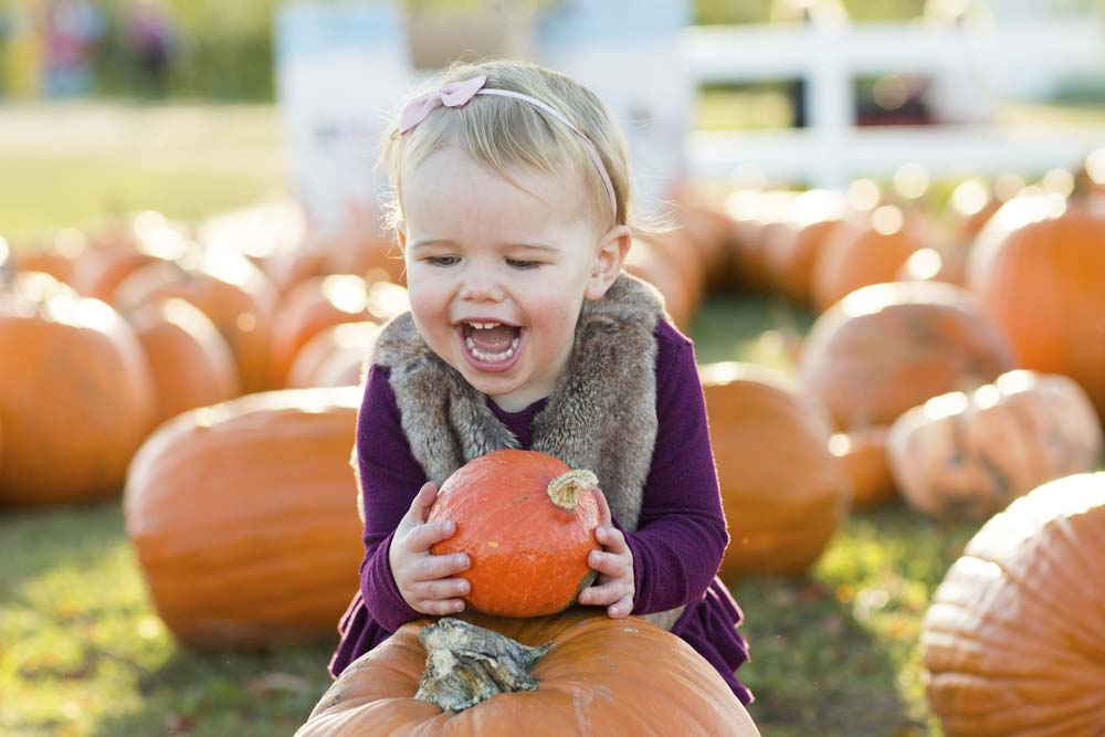 pumpkin_session_wayzata.jpg
