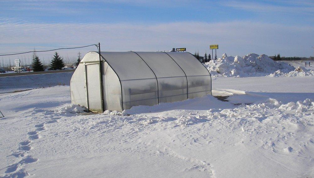 greenhouse in snow 1.JPG