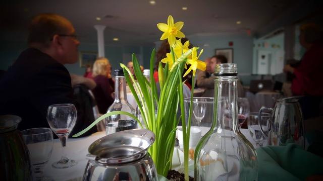 St. David's Daffodils