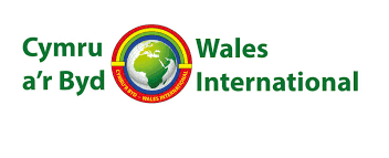 Wales International image