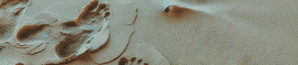 Traces de pieds nus dans le sable humide. Coquillage.