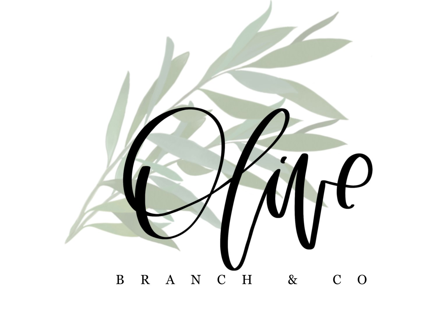 The Olive Branch & Co.