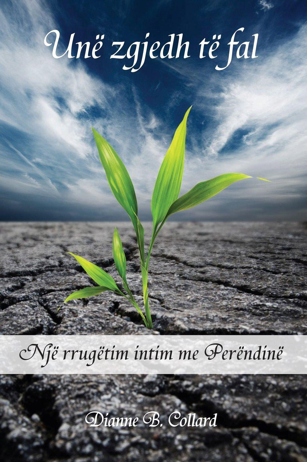 Albanian: AEM-Misioni Ungjillor