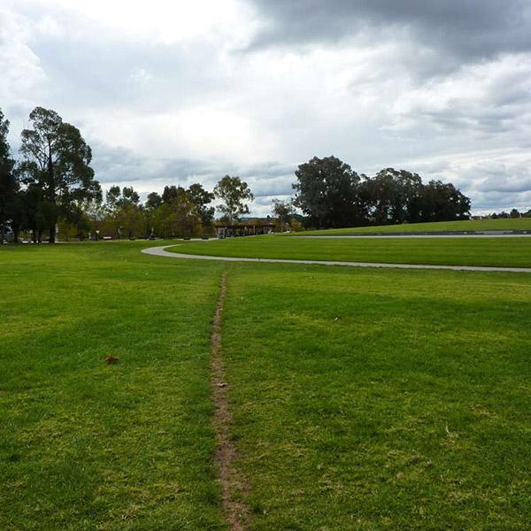 desire-line-path.jpg