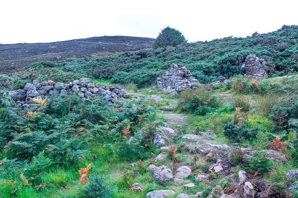 33-clearance-village-badbea_ruins-homes.jpg
