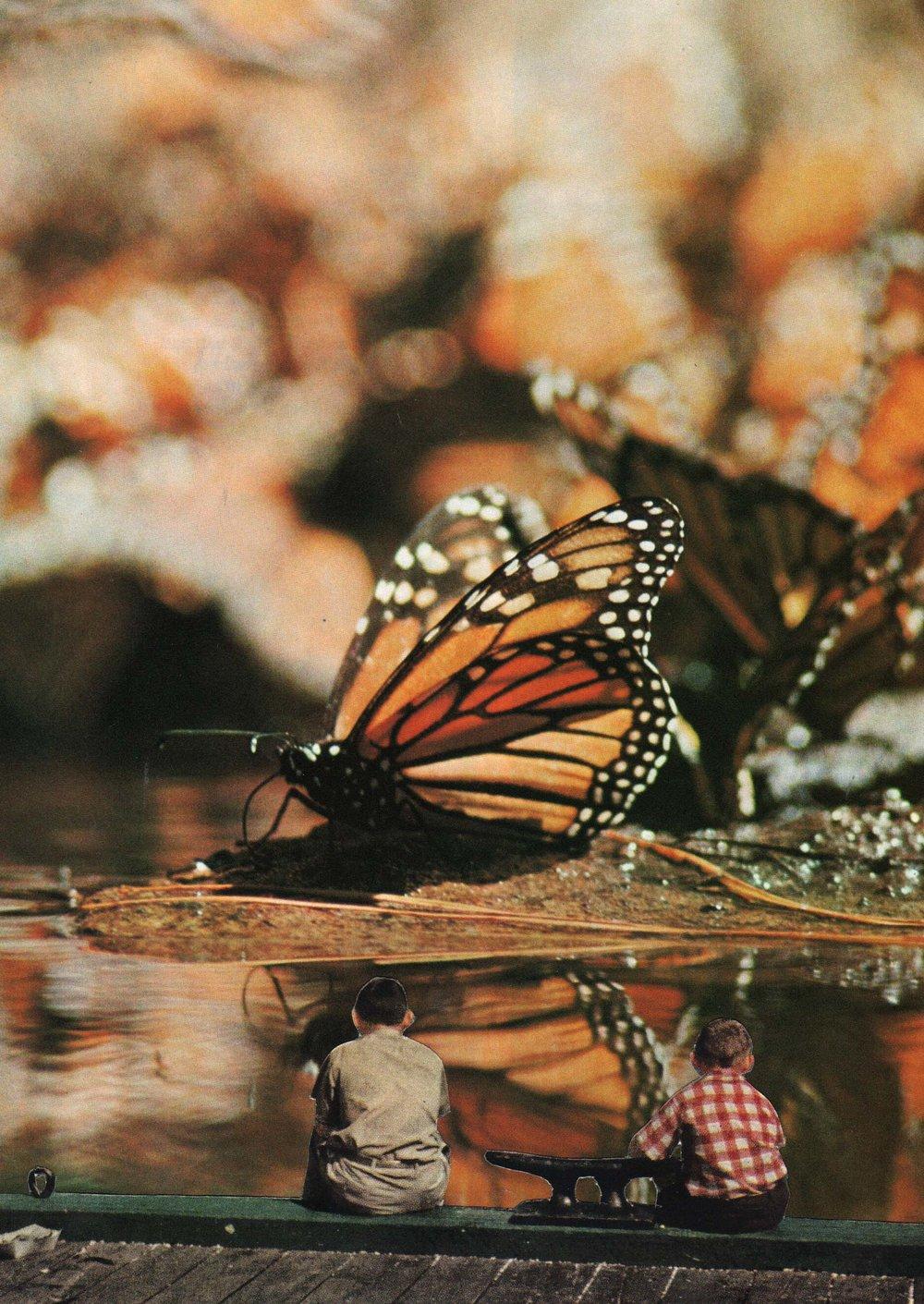 Last of the Monarchs