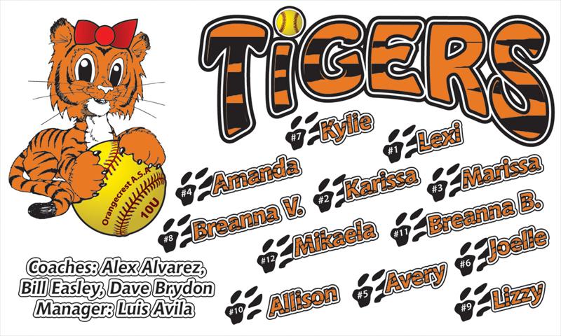 little Tigers team banner.jpg
