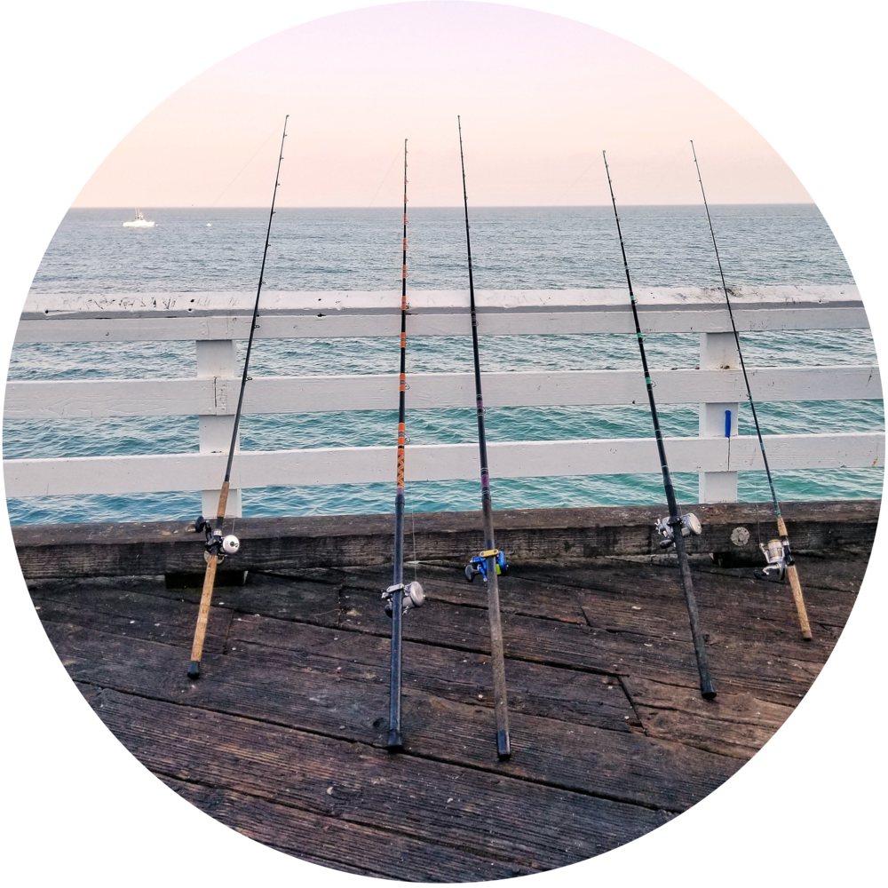 Fishing - Fishing enthusiast? The central coast has everything from ocean fishing to fresh water fishing in the waters around the area.