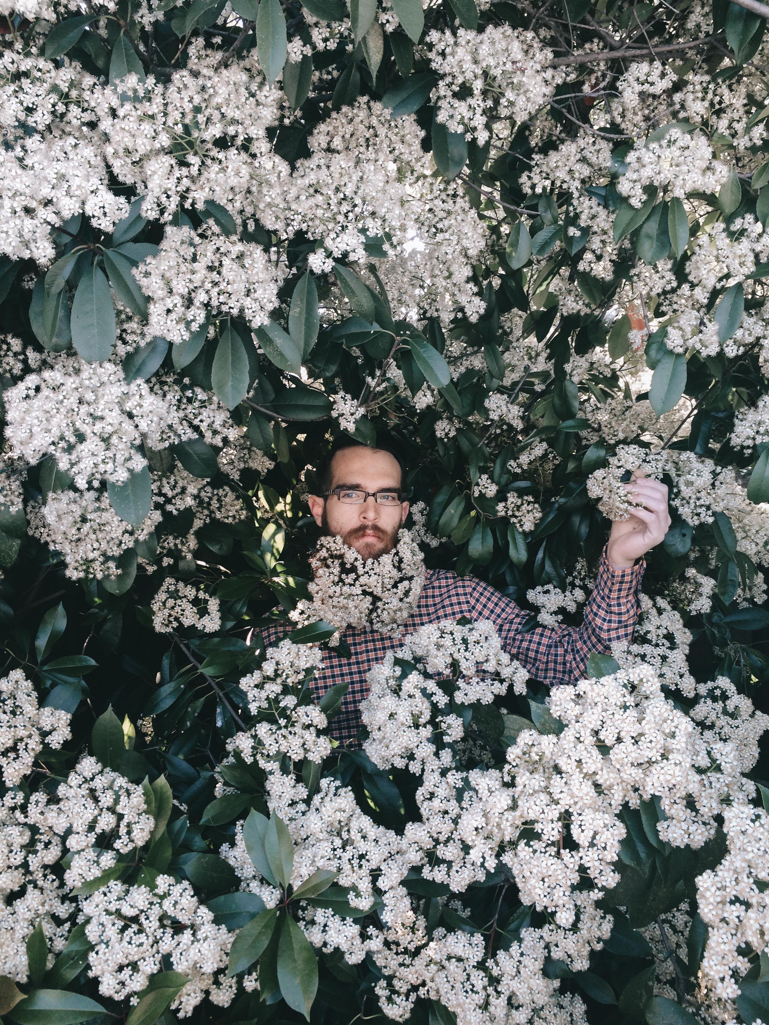 flower beard 2