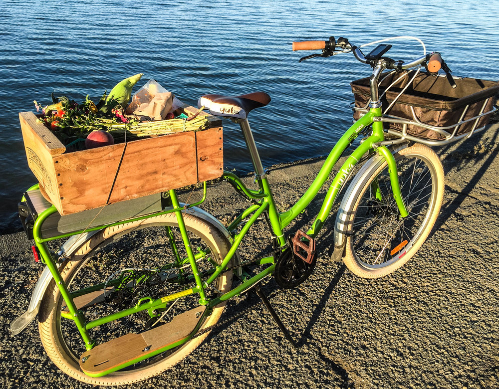 Bike Delivery Waterfront