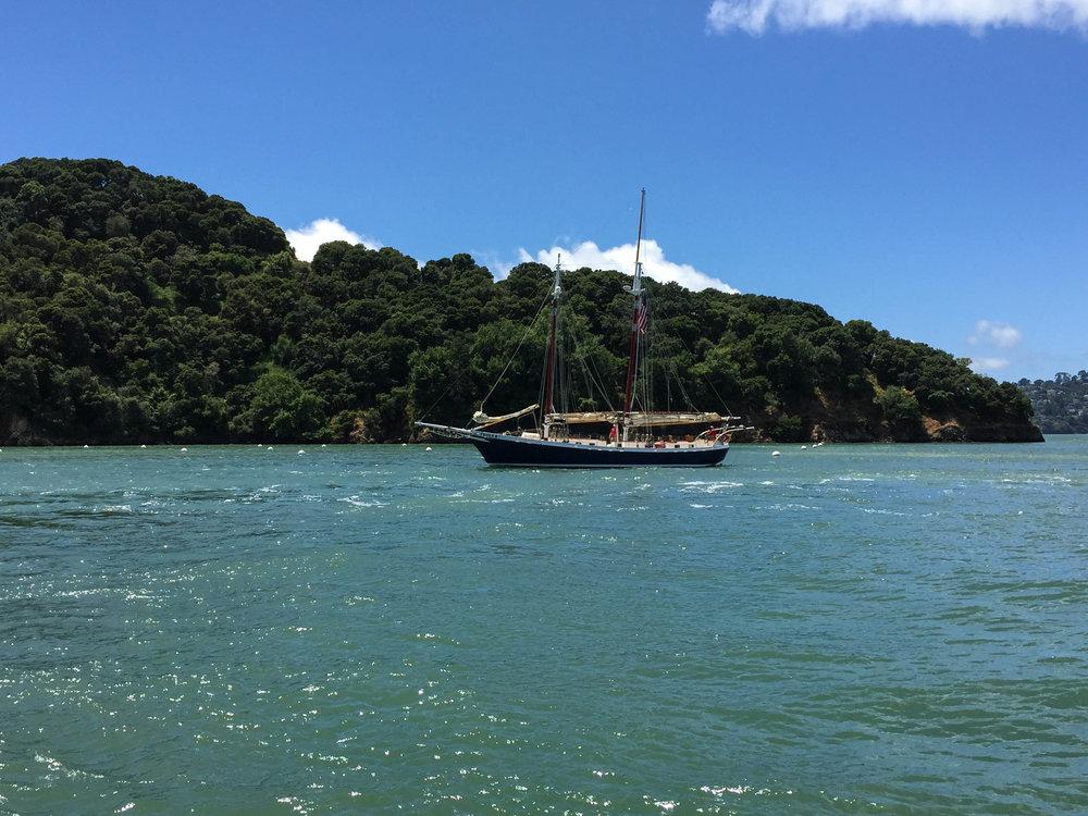 Sailing - Freda B