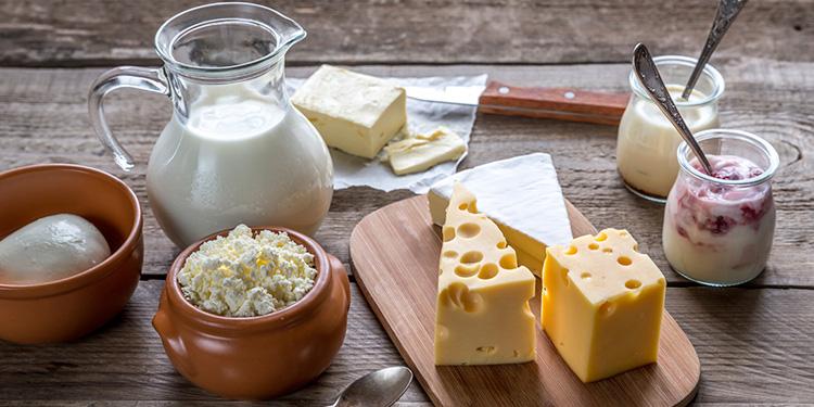 lactose e proteína do leite