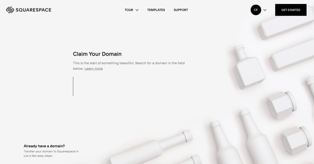 To launch your website, you'll need a domain name