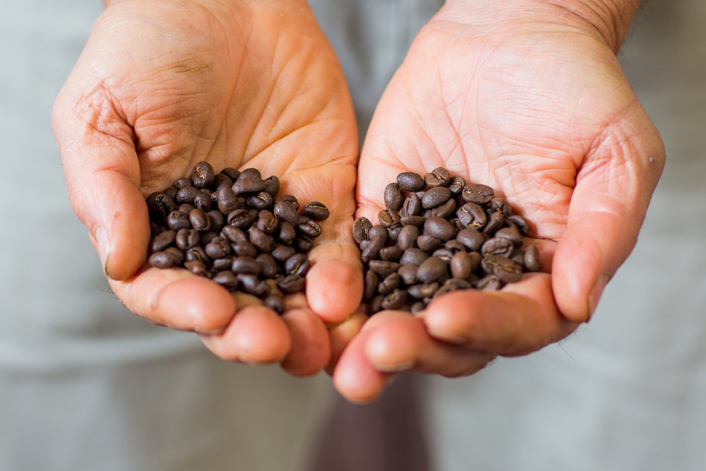OooH LALA - Three-bean blend, Colombian based, Full bodied, Ethiopian Mocha, with a sweet nutty flavour. Espresso, Stovetop. Very good in plungers & filter pots.250g - $14.30500g - $26.601kg - $49.10
